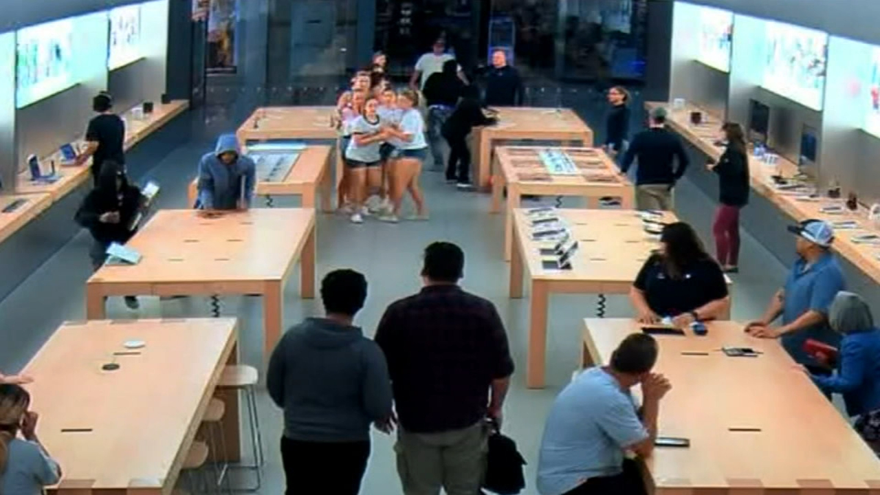 thieves steal from apple