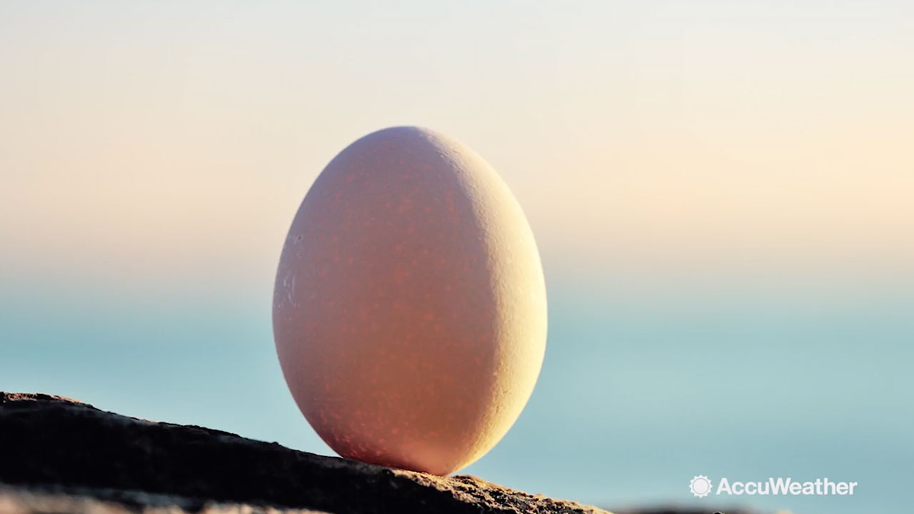 First day of spring 2019 Can you really balance an egg