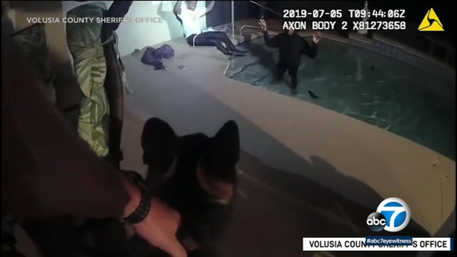 Suspects Caught Hiding In Swimming Pool After Police Chase