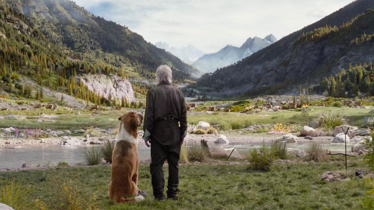 ' call of wild' trailer