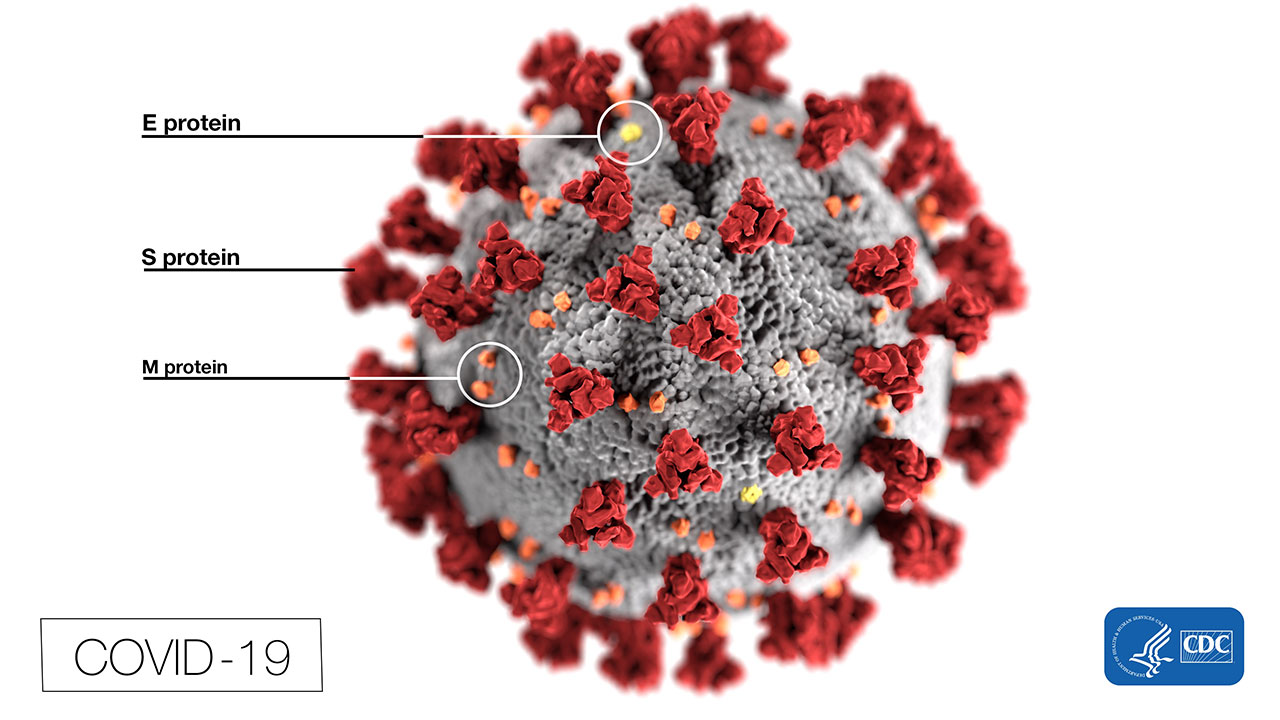 Covid 19 Coronavirus Myths And Mistruths Facts From The
