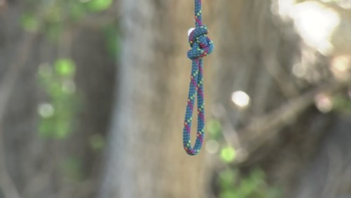 Several' nooses found on trees at Lake Merritt, hate crime ...