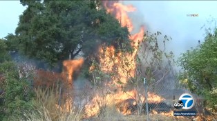 Bobcat Fire: Arcadia residents ordered to evacuate amid 'dangerous'  conditions as blaze burns more than 33K acres - ABC7 Los Angeles