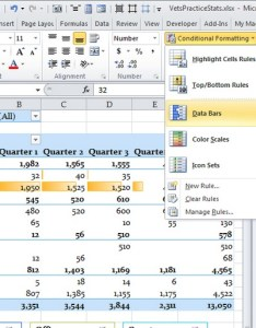 Data bar format applied to the first range of excluding any totals also conditional formatting for pivot tables in excel rh ablebits