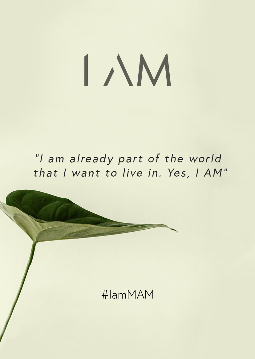 introducing the i am