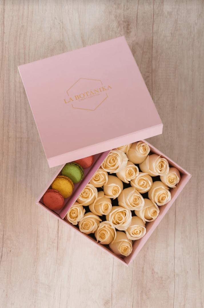 Macaron Box  La Botnika