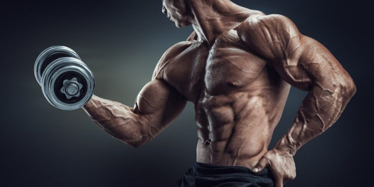 7 Muscle Building Myths That Slow You Down & Stunt Your Progress
