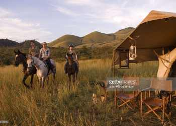 Top Best Safari Camps In Masai Mara To Catch the Great Migration