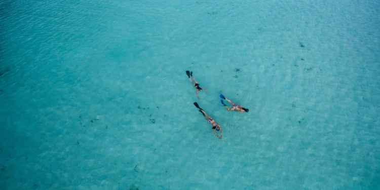 Exploring the Best Snorkel Spots in America