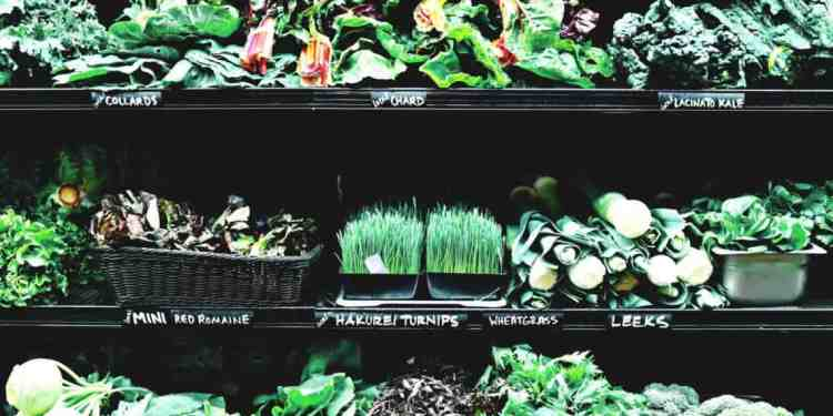 You Aren't Eating Enough Leafy Greens
