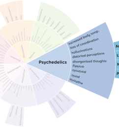 explore psychedelics on the drug wheel [ 1254 x 820 Pixel ]