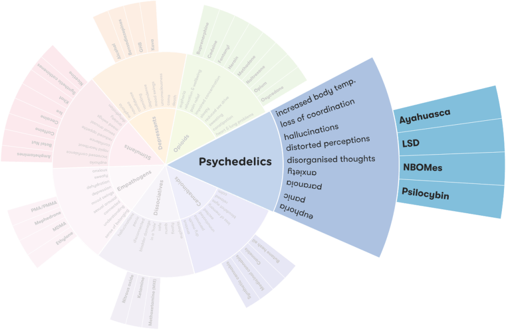 medium resolution of explore psychedelics on the drug wheel