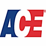 Ace Fitness (Small)