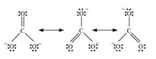 NCERT Solutions for Class 11 Chemistry Chapter 4 Chemical