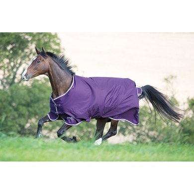 Tempest Plus by Shires Outdoordecke 200 LilaWei