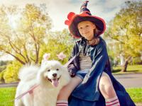 10 Matching Halloween Costumes For Kids and Dogs ...