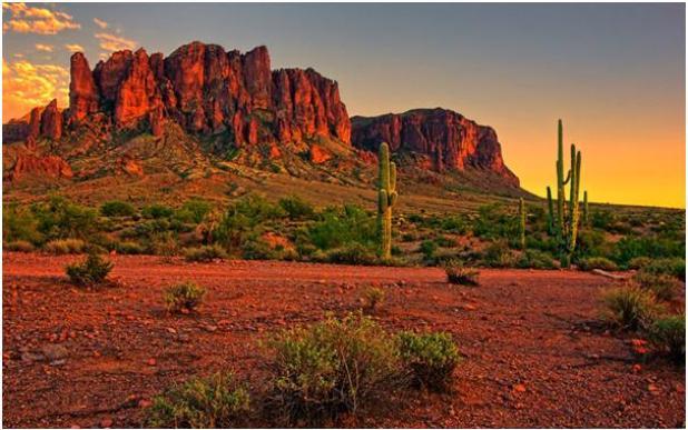 تقع صحراء سونوران على الحدود الأمريكية المكسيكية على مساحة أكثر من 300 ألف كيلومتر، تغطي أجزاء من كاليفورنيا وأريزونا والمكسيك