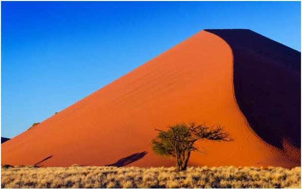 تبلغ مساحة صحراء ناميب في جنوب غرب أفريقيا 81 ألف كيلومترًا، وهي أقدم صحاري في العالم، ، يوجد بها أعلى كثبان رملية في العالم،
