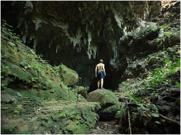 """حين تزور جزيرة """"Iriomote"""" اليابانية سوف ينتابك شعور بأن الغابة كلها ملكك، تغطي الغابات الكثيفة وأشجار المانغروف نحو 90% من مسا"""