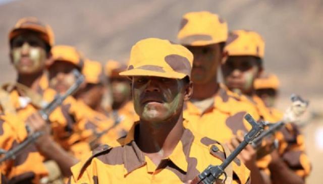 دفعة جديدة من قوات الشرعية تتدرب في مأرب