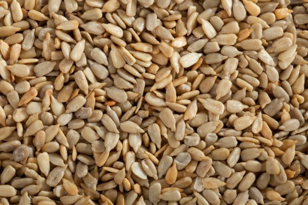 Sunflower Seeds Shelled Roasted Salted All Nuts Nuts