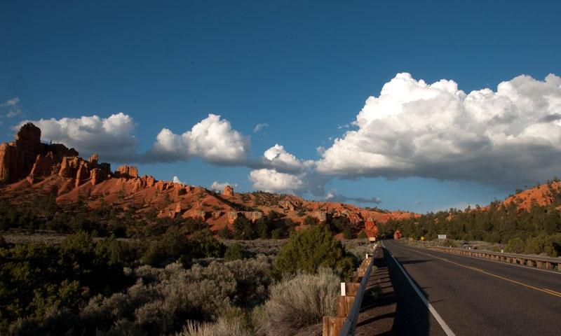 Dixie National Forest in Utah  AllTrips