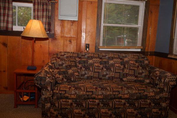 sofa sleeper for cabin round sectional leather book blue mountain lake lodge adirondacks new york all cabins kitchen