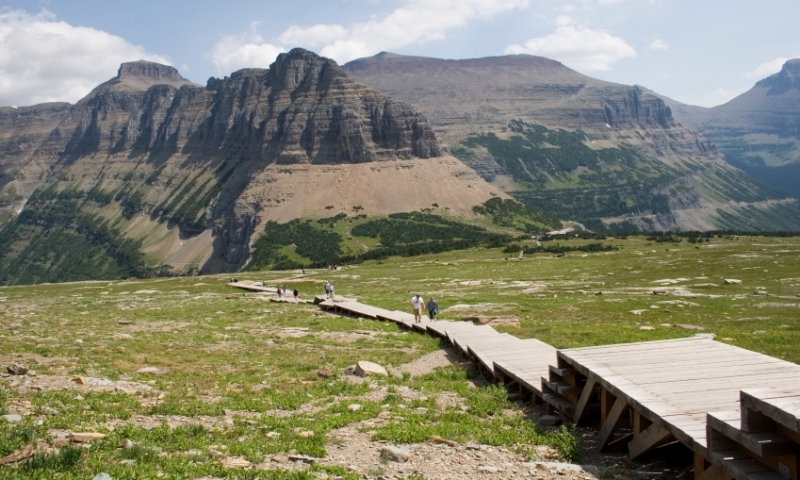 Logan Pass in Glacier Park Montana  AllTrips