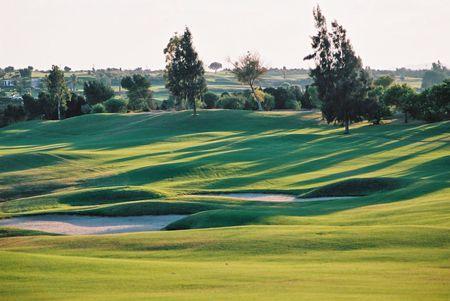 Golf Citrus All Square Golf