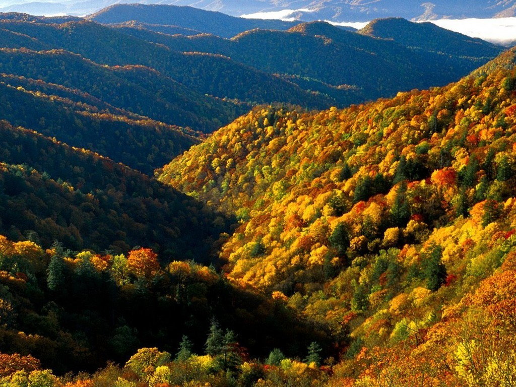 Great Smoky Mountains Fall Iphone Wallpaper Narrow Valley In Autumn Wallpaper Allwallpaper In 8923