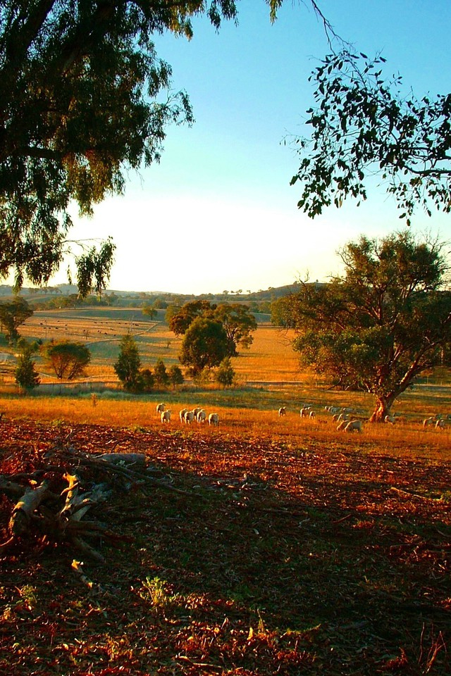 Best Iphone 4 Wallpapers Hd I Love A Sunburnt Country Wallpaper Allwallpaper In