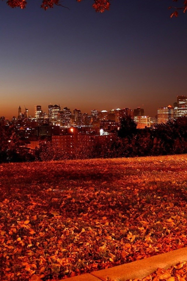 Microsoft Fall Wallpaper Autumn Night Picture Wallpaper Allwallpaper In 6597