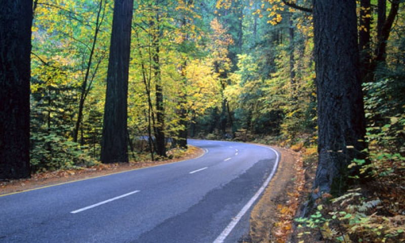 Yosemite National Park Scenic Routes Driving  Auto Tours  AllTrips