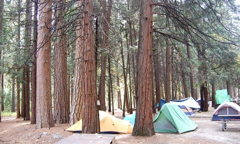 Yosemite National Park Summer Vacations  Activities