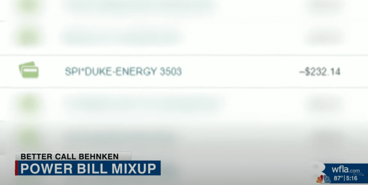 Bank statement reflects the debit payment made from a woman's account to an unknown energy company | Photo: Youtube/WFLA News Channel 8