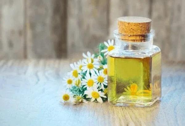 huile essentielle camomille