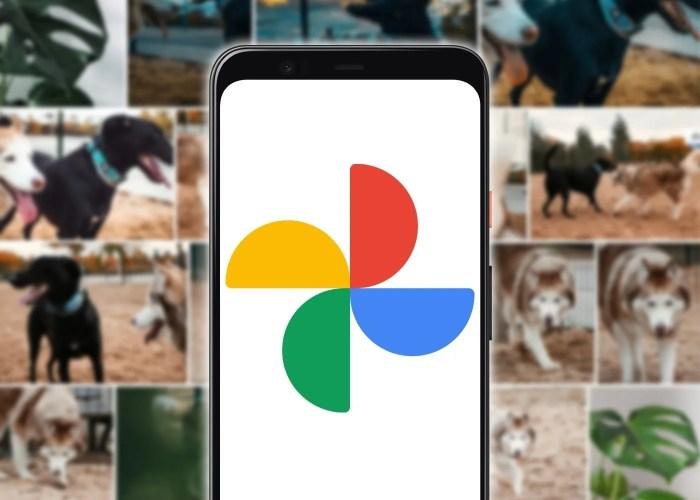 Descargar imágenes y vídeos de Google Fotos