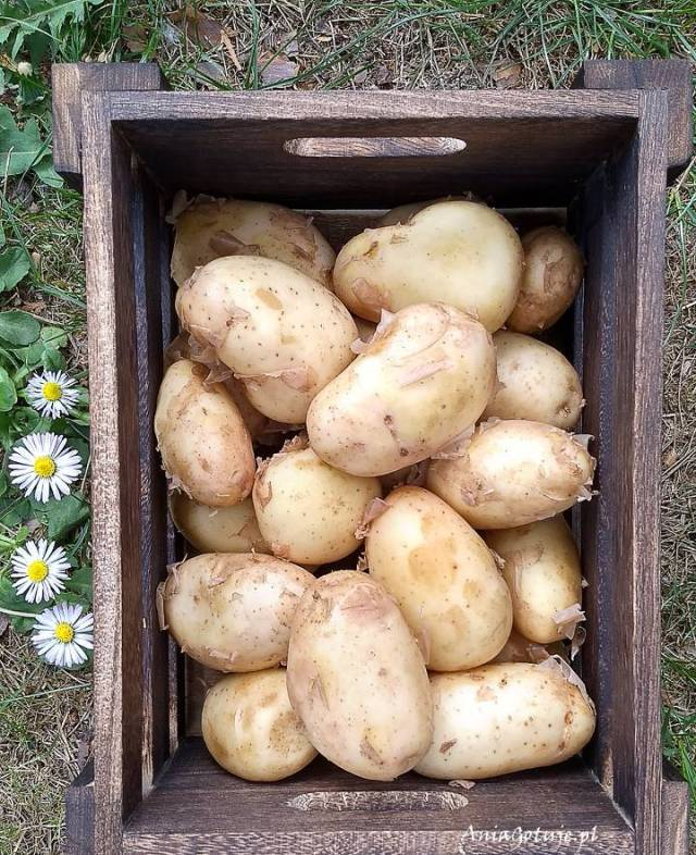 Запеченный картофель, 2 шт.