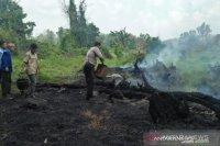 Presiden tegaskan sanksi copot jabatan bila tidak atasi kebakaran hutan