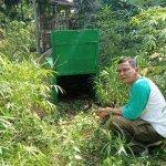 BKSDA Sampit terima tiga laporan kemunculan beruang madu