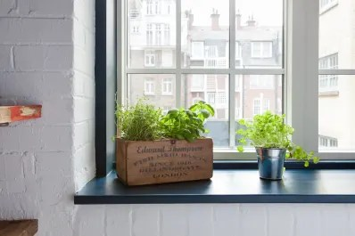 indoor kitchen garden changing hinges on cabinets herb diy ideas apartment therapy
