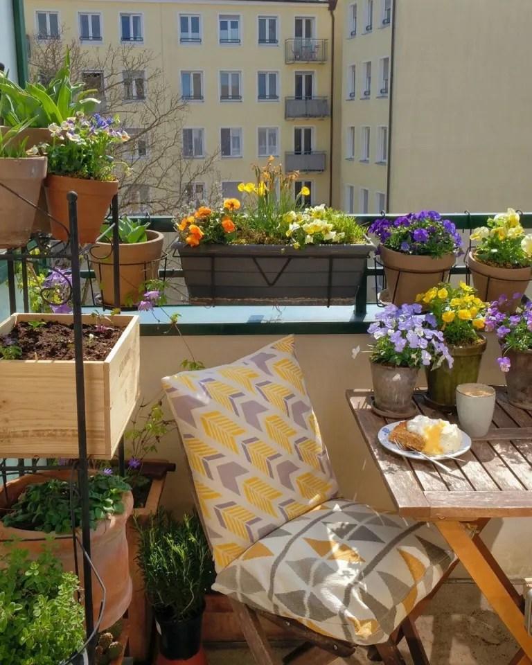 10 balcony garden ideas how to grow