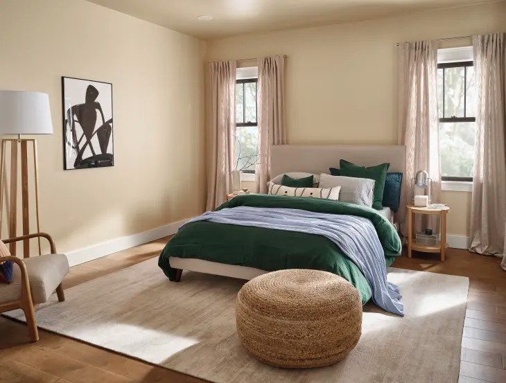 HGTV Home Sherwin Williams 2021 Color of the Year   Apartment Therapy