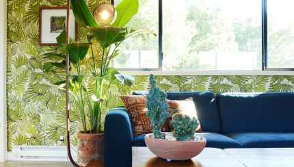The Best Tropical House Plants Apartment Therapy