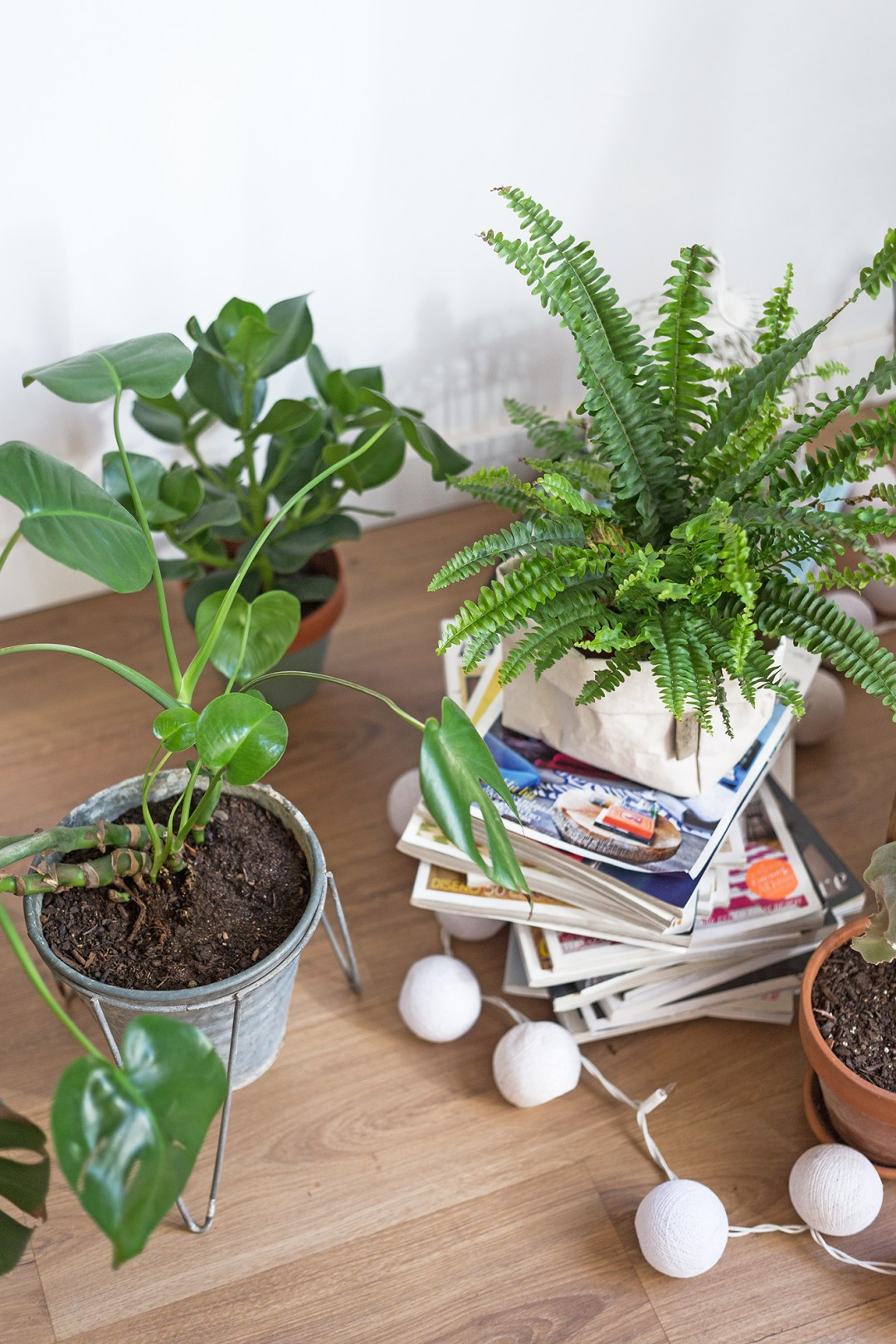 29 Plant Hacks to Upgrade Your Green Thumb, Practically for Free