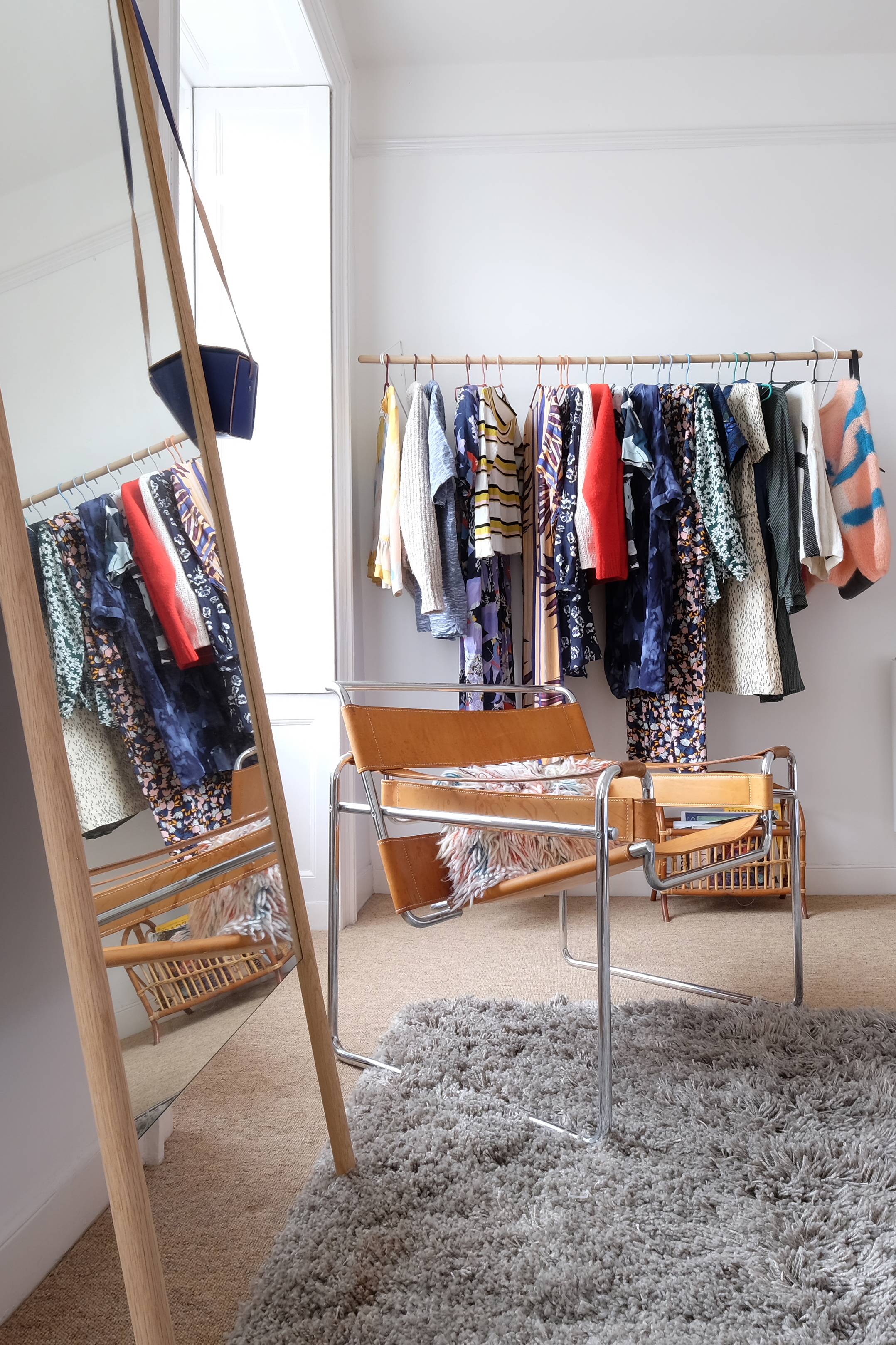 bedroom closet with clothing racks