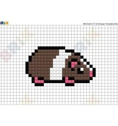 cavy diagram [ 2000 x 2000 Pixel ]