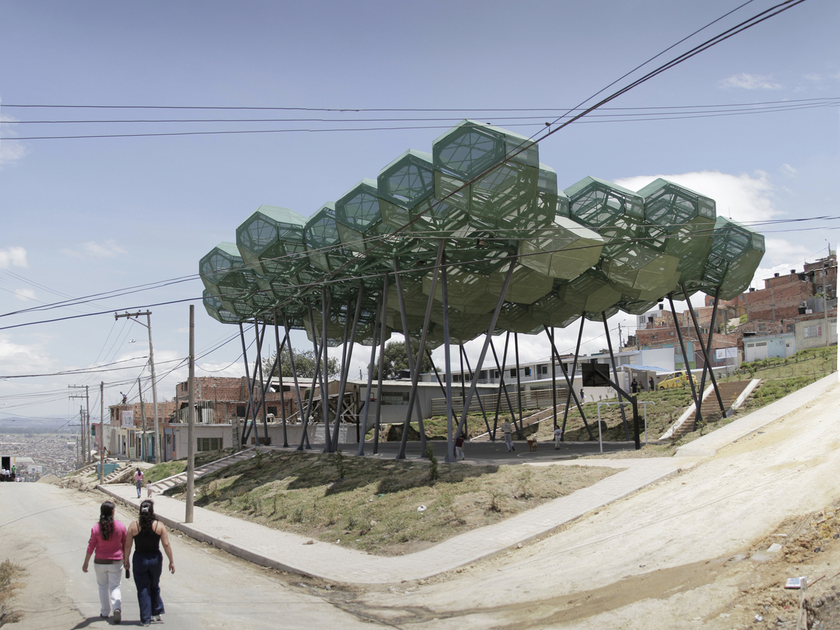 forest canopy diagram trs female wiring an interview with bogotá based giancarlo mazzanti