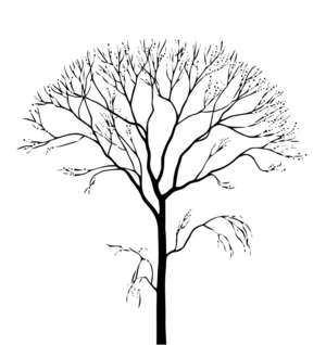 Kahler Baum Staffageobjekte Archinoah Data Sharing