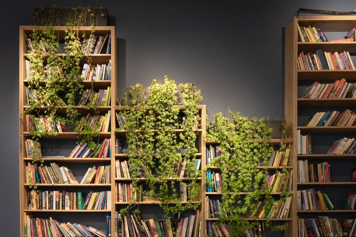 13 Best Bookshelves You Can Buy Online And Actually Want